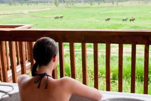 Vista Verde Luxury Guest Ranch - Steamboat Springs