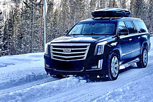 Private Car & Limo Svc - Silver Mountain Express