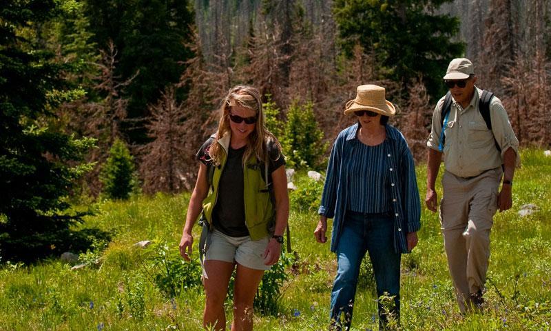 Hiking in Steamboat Springs