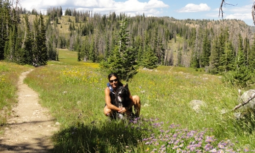 Steamboat Springs Hiking Trails Colorado Hikes Alltrips