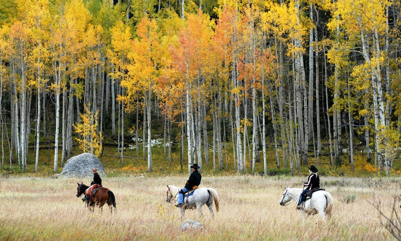 Horseback Riding at Vista Verde Ranch in Steamboat Springs